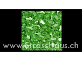 5328 Fern Green (291)